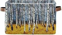 TropicalLife JNlover Autumn Forest Birch Tree