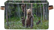 TropicalLife JNlover Forest Animal Bear Square