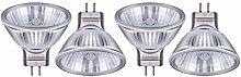 TTaceb Halogen Light Bulbs Halogen Capsule Bulbs