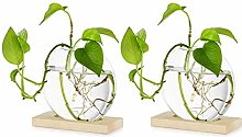 TTZY Tabletop Hanging Glass Planter Pcs of 2