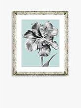 Tulip on Blue 2 - Framed Print & Mount, 46 x 36cm,