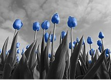 Tulips Photographic Print East Urban Home Size: