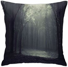 TUOFUBAGS Light Frame in A Dark Forest Soft Throw