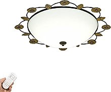 TY&GH LED Ceiling Lamp Small Bedroom Light Study