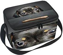 Use7 Black Dachshund Puppy Dog Insulated Lunch Bag