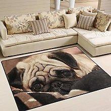 Use7 Cute Pug Dog Area Rug Rugs for Living Room