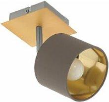 Valbiano 1-Light Gold Brushed Brass & Grey Finish