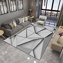 Velvet Rug Area Rugs For Living Room Bedroom gray