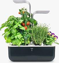 Veritable Indoor Garden Smart Edition 4 Slot Herb
