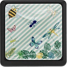 Vibrant Insect Square Cabinet Knobs Cabinets