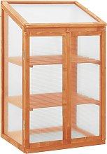 vidaXL Greenhouse 60x45x100 cm Firwood