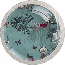 Vintage Butterfly Bird Floral Teal Pattern Drawer