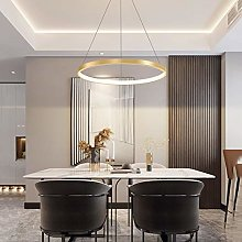 VIWIV LED Pendant Light Ring Circle Design