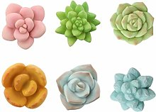 VOSAREA 6pcs Fridge Simulated Succulent Plant