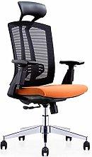 Waist Support Ergonomic Chair Study Office Chair
