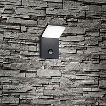 Wall lamp gray incl. LED IP54 with motion detector