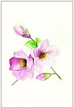 Wall Picture of Komar Magnolia Breathe Poster