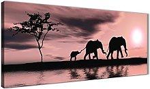 Wallfillers Blush Pink African Sunset Elephants