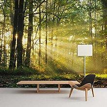 Wallpaper for Bedroom Sunny Woods 157.5x110.2inch