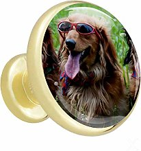 Wardrobe Gold Knobs Dog with Glasses Cabinet