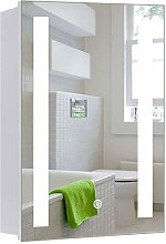 Warmiehomy Modern LED Bathroom Mirror Cabinet
