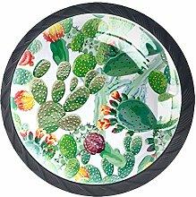 Watercolor Cactus Crystal Door Knobs Glass