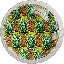 Watercolor Pineapple Round Cabinet Knobs 4pcs