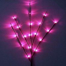 Watopi Indoor Twig Lights Decor Twig Branches,