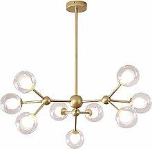 WDLWUJIN Lamps Ceiling Lamp Chandeliers Lights