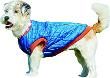 Weatherbeeta Puffer Dog Coat (60cm) (Blue/Flame)