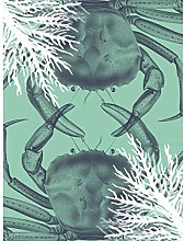 Wee Blue Coo Crab And Coral Collage Large Wall Art