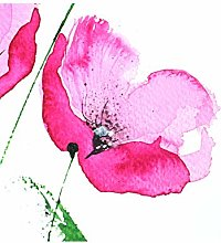 Wee Blue Coo Flower Poppy Watercolour Large Wall