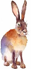 Wee Blue Coo Hare Watercolour Isolated Art Print