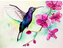 Wee Blue Coo Hummingbird And Orchid Large Wall Art