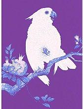 Wee Blue Coo Purple Cockatoo By Ohara Koson Art