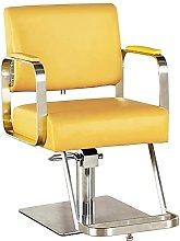 WENJIA Bar Stool Hydraulic Barber Chair Salon