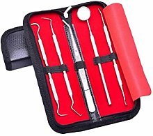 WFIT Stainless Steel Dental Hygiene Kit