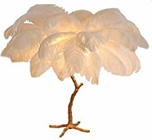 Wgxssjc Table lamp Nordic Ostrich Feather table