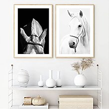 White Black Horse Poster Animals Photography