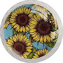 White Drawer Knobs Sunflower Dresser Knobs Round