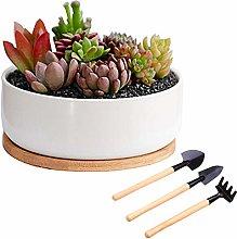 White Pots for Indoor Plants-Round Flower Pot