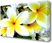White Yellow Flowers Flowers Canvas Print Wall Art