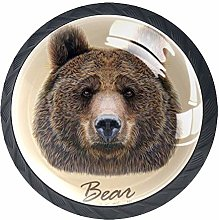 Wild Grizzly Cute Brown Bear Head 4 Pack Cabinet