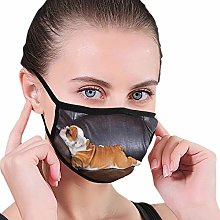 Windproof Activated Carbon mask,English