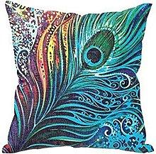 Winkey Square Pillowcase, 43cm*43cm Peacock Sofa