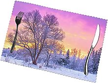 Winter Printing Placemats for Dining Table Table