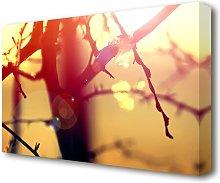 Winter Sunlight Forest Canvas Print Wall Art East