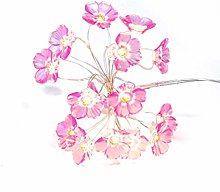 Wisvis 3Meter Flower String Lights, 30 LEDs Cherry