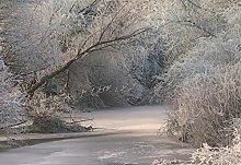 Wizzard & Genius 5161-4P-1 Frozen Forrest Photo