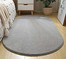 WJW-DT Light Grey Rug Oval Area Tradition Rugs for